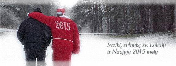 2015-nmetai_small