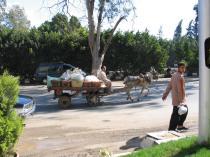 krovininis transportas Gizoje