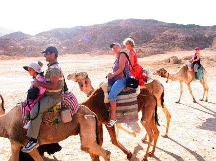 Vida__camel safaris